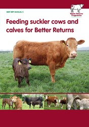 Feeding suckler cows and calves for Better Returns